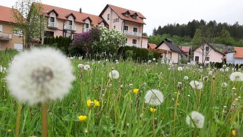 Rooms Konoba Jure, Krasno croatia